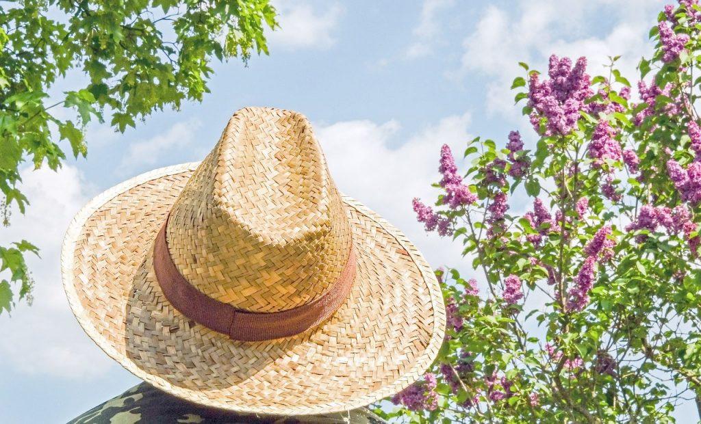 naturalne sposoby na ochronę przed słońcem